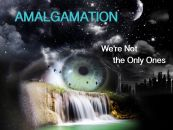 We're Not the Only Ones - Amalgamation